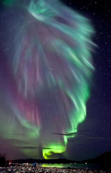 a Superb Aurora pic