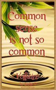 Common Sense Voltaire Quote