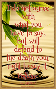 Defend your Rights Voltaire Quote
