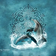 Beautiful dolphins by Brigid Ashwood on Skinit