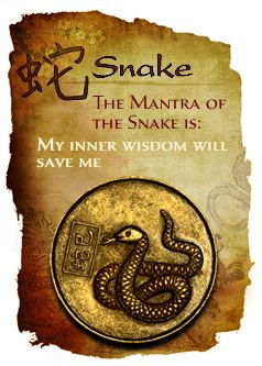 year-of-the-snake-1