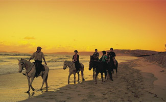 Horse Riding along the Beach..