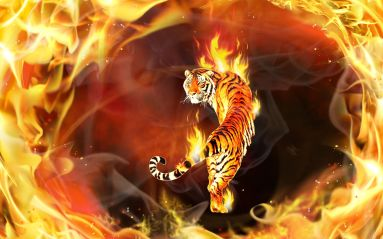 fire tiger-flames-digital-art-hd-wallpaper-
