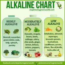 Alkaline Foods Chart