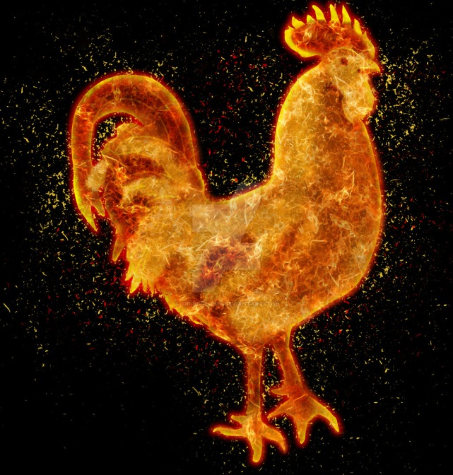 fire_rooster_tandoori_by_tri_edge_1836-d88635e